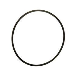 Pierścień uszczelniający Agria