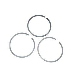Zestaw pierścieni tłokowych Briggs & Stratton 499921, 391669
