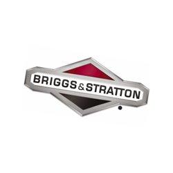 Głowica cylindra, płytka Briggs & Stratton 698476,491490