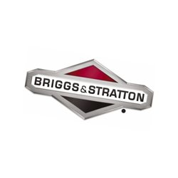 Plate-back Briggs & Stratton 594902