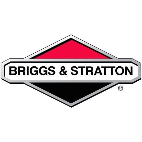 Naklejka – emisja Briggs & Stratton