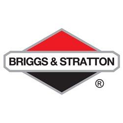 319893GS Panel Briggs & Stratton